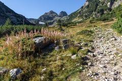 Amazing view of Malyovitsa peak, Rila Mountain Stock Image