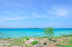 Amazing view of the Mangel Halto beach in Aruba Stock Images