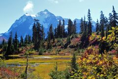 Beautiful fall colors around Picture Lake and a view of Mount Shuksan in the Mount Baker Wilderness stock photography