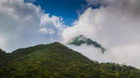 Amazing view mountain Stock Photo