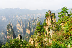 Amazing view of natural quartz sandstone forest Avatar Rocks. Amazing view of natural quartz sandstone forest in canyon of the Tianzi Mountains Avatar Mountains royalty free stock photo