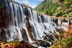 Amazing view of the Nuo Ri Lang Waterfall Nuorilang. Among woods and mountains in Jiuzhaigou nature reserve Jiuzhai Valley National Park of Sichuan province Stock Photography