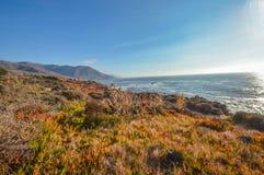 Amazing view of Pacific coast, California. Beautiful coast near Big Sur, California Royalty Free Stock Images