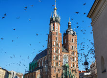 Amazing view of Rynek Glowny, Main Market square in  Krakow. Amazing view of Saint Mary´s Church and birds flying in the Rynek Glowny ,Market Main Square in Stock Images
