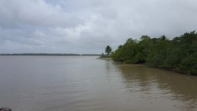 Suriname River Stock Images