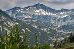 Amazing view to Banski Suhodol Peak, Pirin Mountain Stock Images