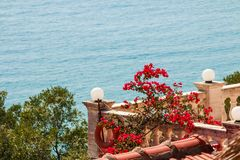 Amazing view to sea and bougainvillea flowers. Mediterranean landscape.Oleander, colorful flowers near a patio,Sea view. View to sea and bougainvillea flowers Stock Images