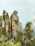 Amazing view of Zhangjiajie National Forest Park Stock Image