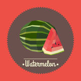 Amazing vintage fresh watermelon illustration Stock Photography