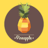 Amazing vintage polygon pineapple illustration Stock Photography