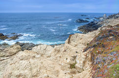 Amazing Vivid View of Blooming Area of Pacific Coastline. Shot o Royalty Free Stock Photo
