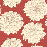 Amazing warm red seamless aster floral pattern with dots Royalty Free Stock Photos