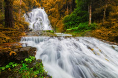 Amazing waterfall Stock Image