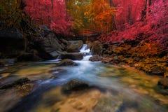 Amazing waterfall Royalty Free Stock Image