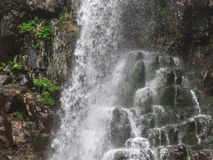 Amazing waterfall in deep forest landscape. Stock Photos