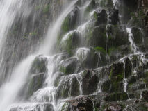 Amazing waterfall in deep forest landscape. Royalty Free Stock Images