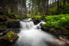 Amazing waterfall in a deep green forest at Low Tatras National park, Slovak Republic. Amazing waterfall flowing between large rocks in a deep green forest at stock photography