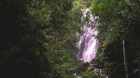 Amazing waterfall, falling water, lush green leaves is waving by the wind. Thailand stock video