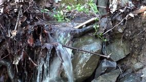 Amazing waterfall in the forest. Clean water flooding in the mountain forest stock video footage