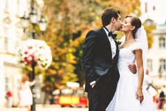 Amazing wedding couple kisses on the streets of blooming old cit royalty free stock photography