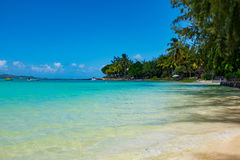 Amazing white beaches of Mauritius island. Tropical vacation Royalty Free Stock Image