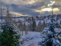 Amazing winter landscape in Bukowina Tatarzanska, Poland stock photo