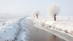 Amazing winter landscape in the Netherlands Royalty Free Stock Image