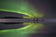 Amazing winter landscape with northern lights stock image