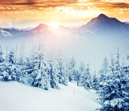 Amazing winter in the mountains Stock Photography