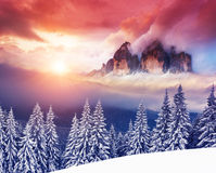 Amazing winter in the mountains Royalty Free Stock Photos