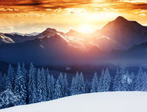 Amazing winter in the mountains Royalty Free Stock Photography