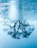 Amazing Winter Reflections Of A Tree On A Frozen Lake Stock Photo