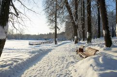 Amazing winter scenery.Snow-covered road in park. stock photo
