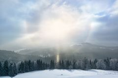 Amazing winter sun Stock Image