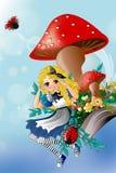 Amazing Wonderland Royalty Free Stock Photography