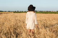 Amazing young lady in the field. Back view image of amazing young lady in the field. Looking aside royalty free stock photos