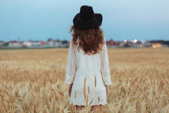 Amazing young lady in the field. Looking aside. Back view image of amazing young lady in the field. Looking aside stock photo