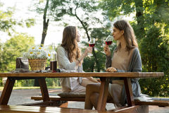 Amazing young two women sitting outdoors in park drinking wine royalty free stock photo