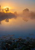 Amazingly beautiful sunrise over Lake, foggy Stock Images