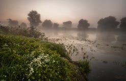 Amazingly beautiful sunrise over Lake, foggy Royalty Free Stock Images