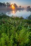 Amazingly beautiful sunrise over Lake, foggy Stock Image
