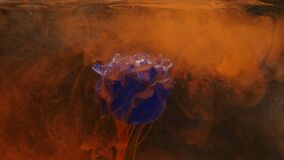 Amazingly wonderful atmospheric shot of a beautiful blue rose mixing with ink in water.  stock footage
