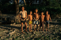 Amazon Basin Stock Images