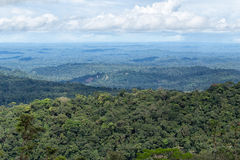 The Amazon basin of Ecuador. Seen from the top of a hill stock photo