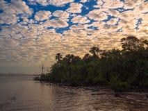 amazon flod Royaltyfri Fotografi