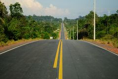 Amazon forest and road. Forest and road located at Itapiranga city, Amazonas Estate, Brazil Stock Images