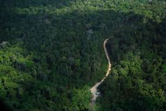 Amazon forest and road. Forest and road located at urucara city, Amazonas Estate, Brazil Royalty Free Stock Photo
