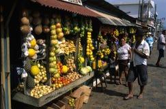 amazon handfat brazil Royaltyfri Fotografi