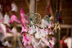 Amazon jungle dream catcher moved by wind.  Stock Photography