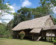 Amazon jungle lodge Stock Photos